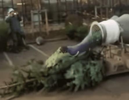 tree wrapping machine